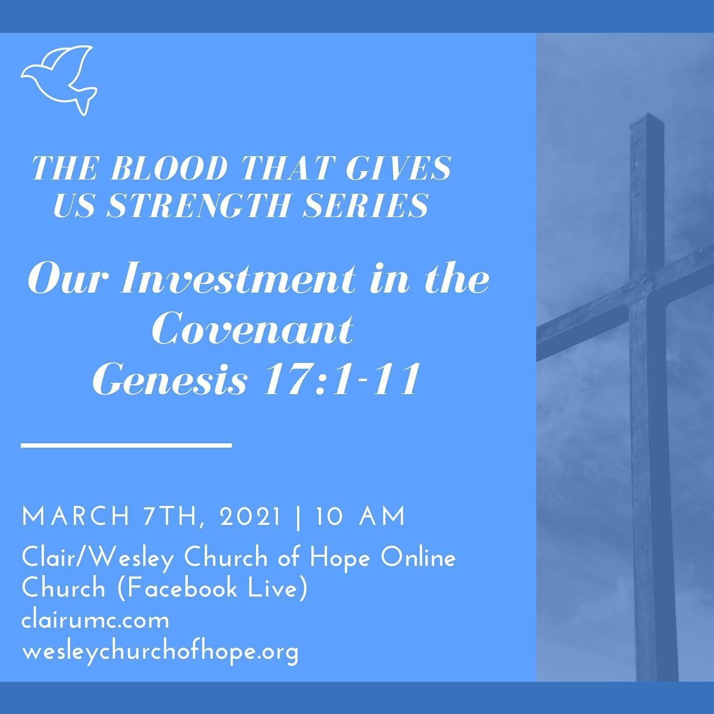 The Blood That Gives Us Strength: Our Investment in the Blood